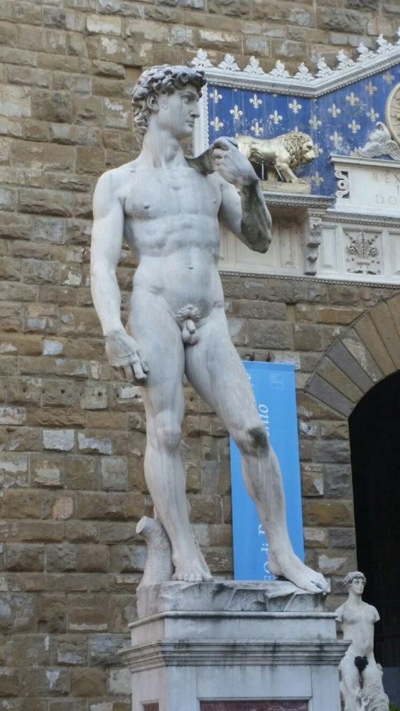 Il 'David di Michelangelo'